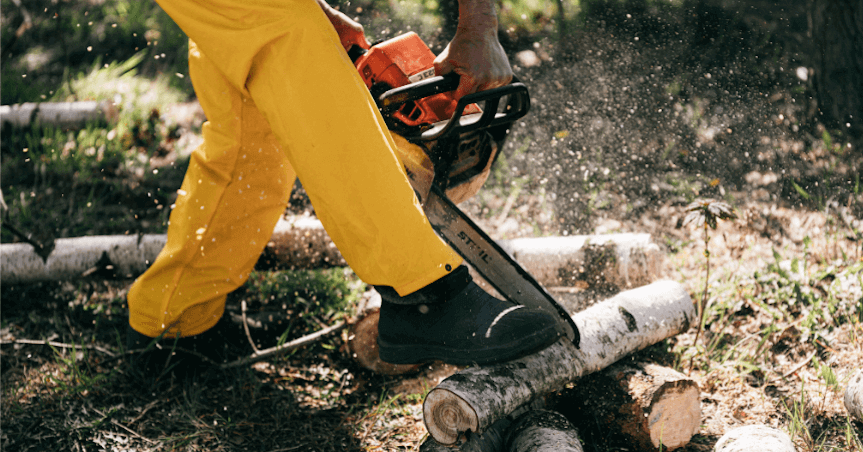 Tree Removal Services Georgia